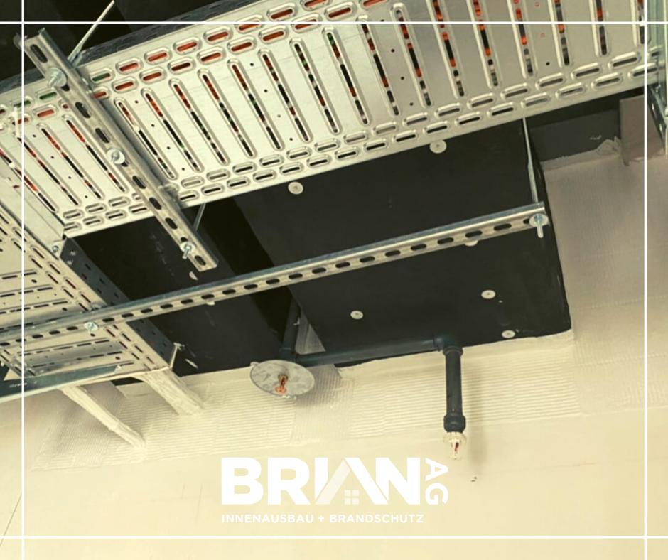 Brian-Trockenbau(1)